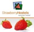 Strawberry Hostels